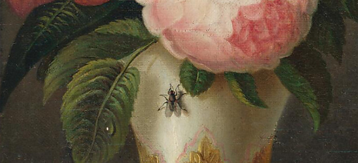The Fly on the painting